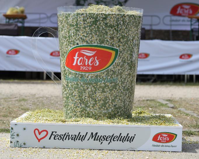 festivalul musetelului fares
